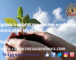 Pan Diario 1 Octubre 2017